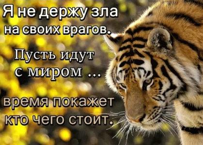 Заговор от злых людей: чтобы враги не мешали вам жить